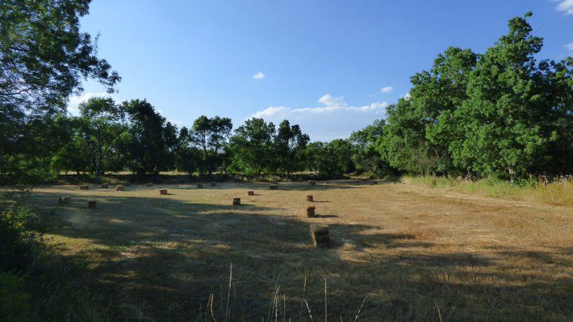 Casa Rural Fuentebuena - Entorno